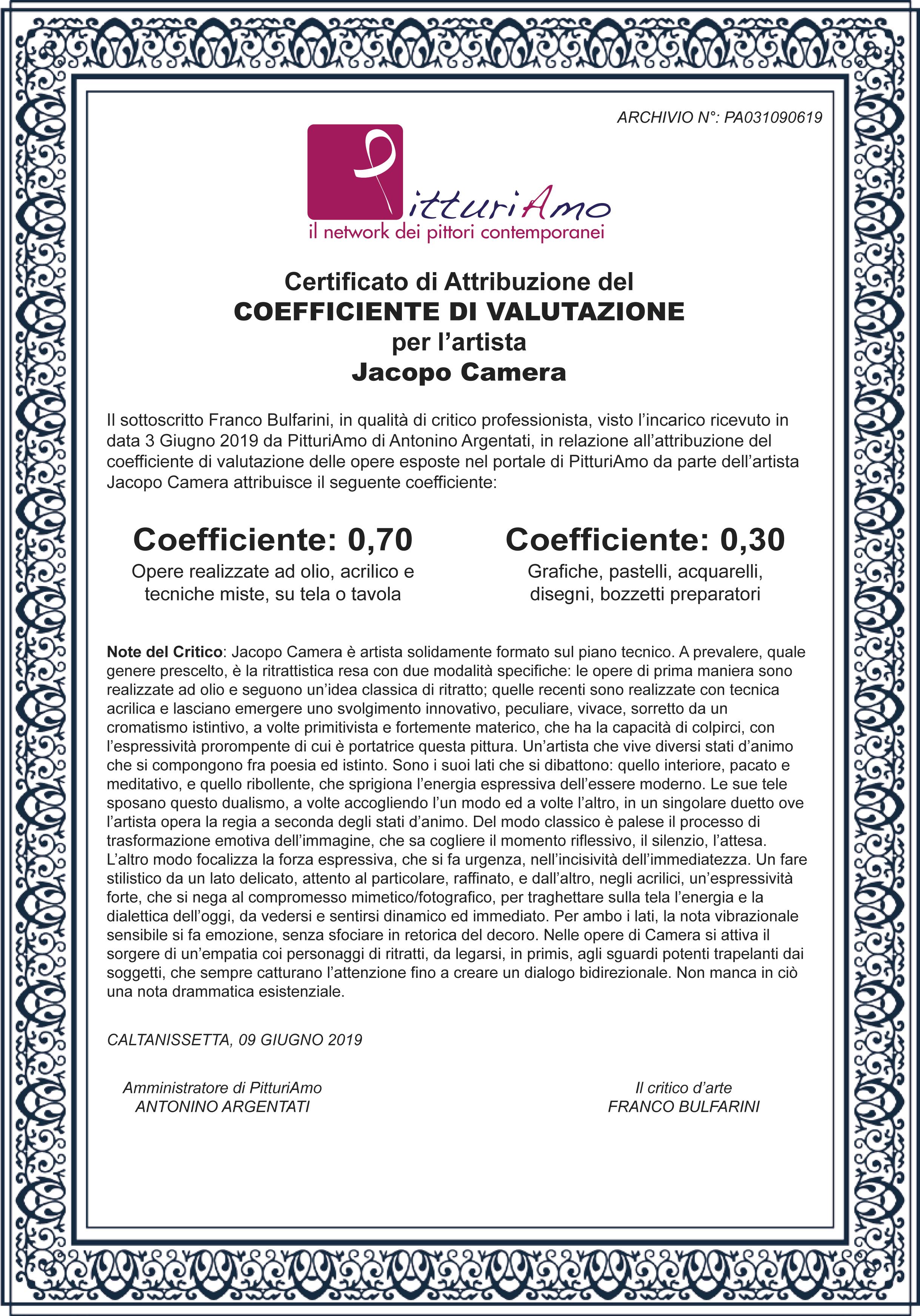 Il Coefficiente del pittore Jacopo Camera - Artista contemporaneo Italiano