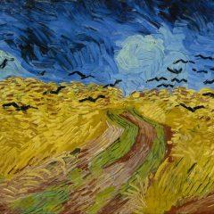12 buoni motivi per partecipare al Premio Internazionale Vincent Van Gogh