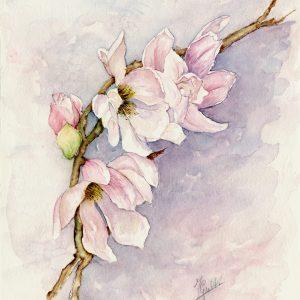 """Il sito web dell'artista Franca Grulli - """"Magnolia"""", Acquerello (30×40 cm), 2020"""