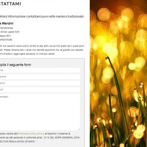 Patrizia Manzini - Il sito della pittrice è online - Contattami