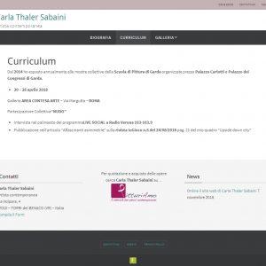 Il sito web dell'artista Carla Thaler Sabaini - Curriculum